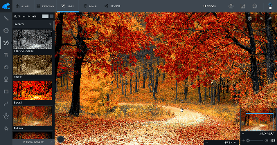 Screenshot of third party photo editor